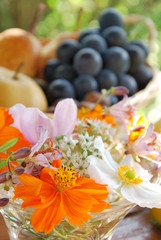 コスモスと果物