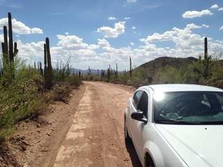 car in cactus desert