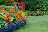 Colorful Garden Detail