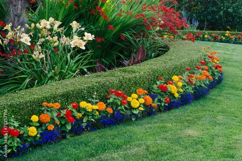 Colorful Garden - 70357916