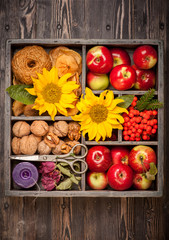 Autumn composition in wooden box. Apples, nuts,  sunflower