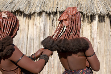 Rear view of himba women