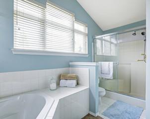 Refreshing bathroom interior in light blue tone