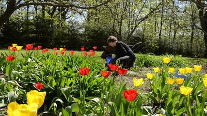 girl care spring tulip flowers in backyard