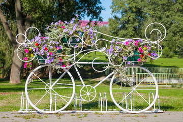 decorative bicycle carrying flowers