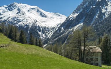 panoramic alpine landscape