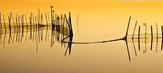 naturaleza calmada