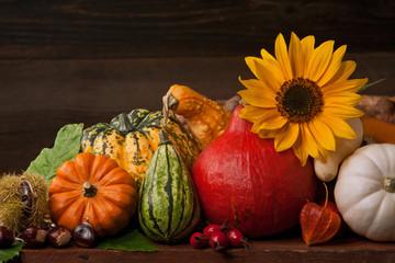 Herbstliches Kürbisstillleben