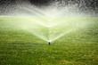 garden sprinkler on the green lawn - 70369370