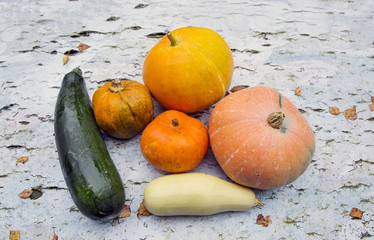 vegetables, pumpkin, zucchini