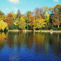 pond and autumn trees, square image