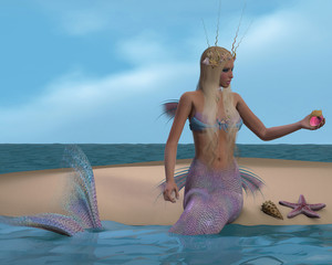 Mermaid and Seashells