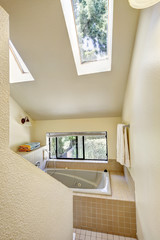 Bathroom with high vaulted ceiling and skylight