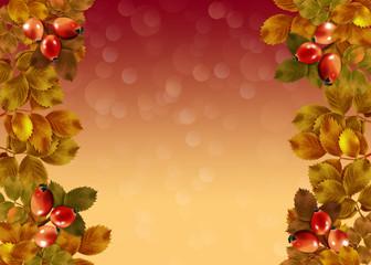 фон осенний с листьями и плодами шиповника