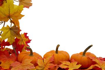 Colorful Fall Border