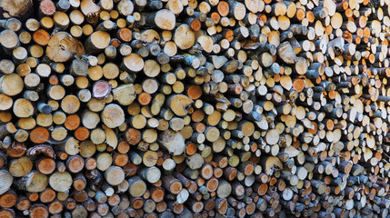 Holz Beig
