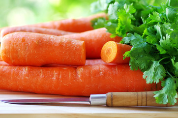 Preparation of a carrot salad and coriander
