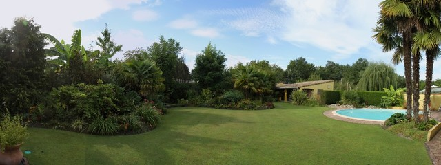 panorama d'un jardin exotique avec piscine