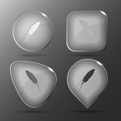 Feather. Glass buttons. Vector illustration.