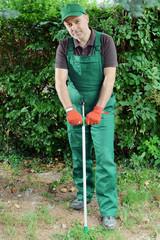 Gärtner bei Gartenarbeit mit Unkrautstecher
