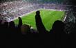stadion cheer people - 70395917