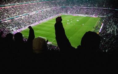 stadion cheer people