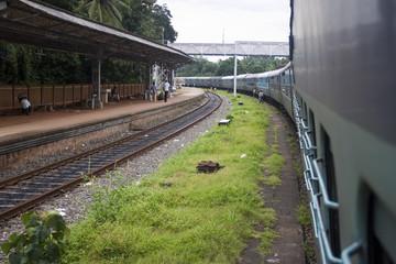 Local train stop in Kerala, India