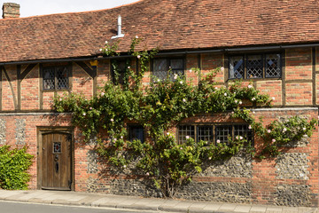 climbing rose and wattle house, Henley on Thames
