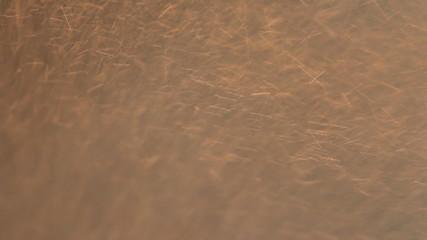 Abstract background water, rain drop on floor.
