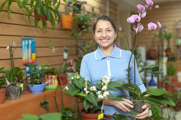 Female florist with orchid plant