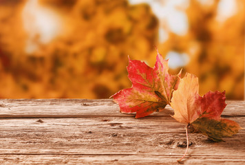 Two autumn leaves on a rustic table outdoors
