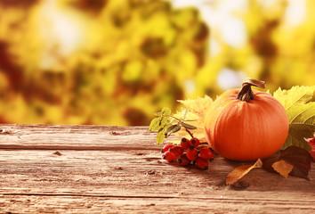 Pumpkin and red rose hips in an autumn garden