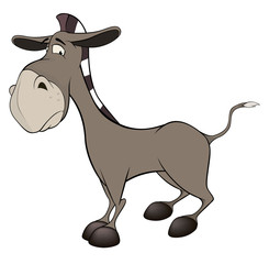 The little burro. Cartoon