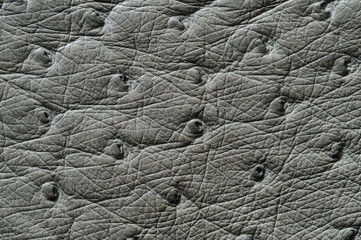 Closeup of seamless grey leather texture
