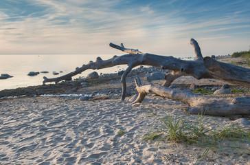 Sunset at sandy beach of the Baltic Sea, Latvia, Europe