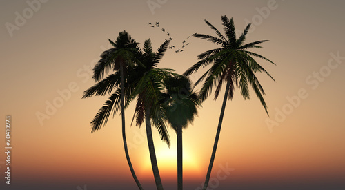 Leinwanddruck Bild sol y playa
