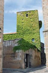 Torre con hiedra, calle Orellana, Cáceres, España