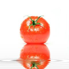 Feinschmecker Tomate