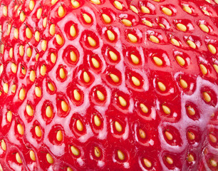 Strawberry fruit background.