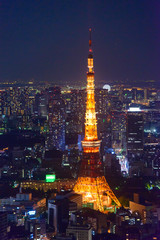 Tokyo in the twilight, direction to the Tokyo Tower and Shinagaw