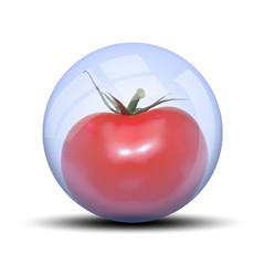 Légume dans bulle : grosse tomate