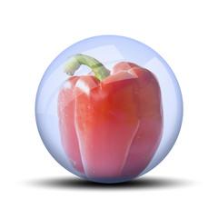 Légume dans bulle : Poivron rouge