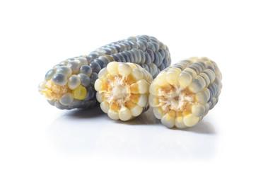 Corn pile on white background