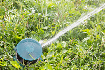 Close up of a sprinkler head watering green grass lawn
