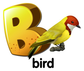A letter B for bird