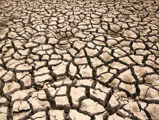 Drought  the ground cracks