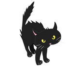 Fototapety BRISTLED BLACK CAT