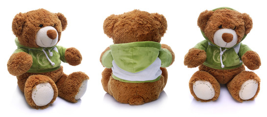Teddy bear positions on white background