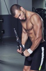 Handsome Muscular Male Model With Perfect Body Doing Triceps Exe