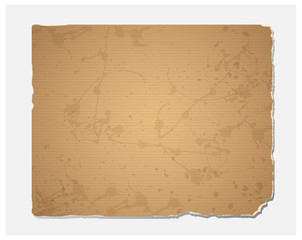 Blank grunge recycled paper texture.Vector file